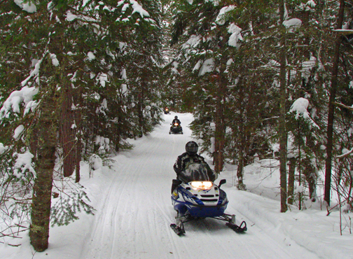 two riders on a snowmobile trail through the woods