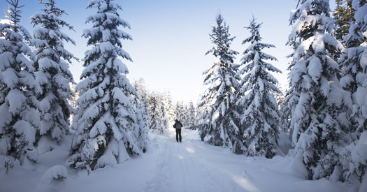 Cross Country Skiing, X-country ski trails in Itasca County, Nordic Ski Trails in Northern MN