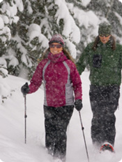 ski and stay, cross counry skiing in Itasca County, best cross country ski trails in Minnesota