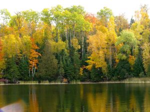 minnesota fall color tours